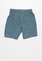 Lizzard - Cono tots board shorts - grey