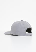 Asics Tiger - Logo cap - grey