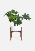 Grey Gardens - Latvia planter medium - white