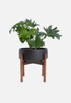 Grey Gardens - Latvia planter medium - black