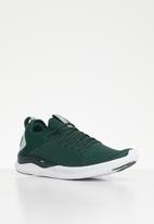 PUMA - Ignite flash evoknit sr wn's - green