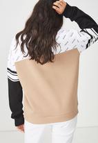 Cotton On - Premium fashion crew neck sweater - multi