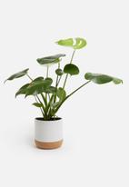 Present Time - Craft plant pot - ceramic cork matte white