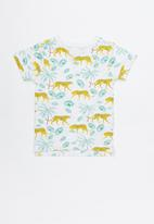 Cotton On - Max short sleeve tee - multi