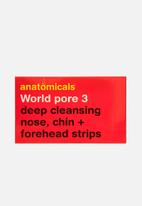 anatomicals - World pore 3 - nose chin and forehead strips