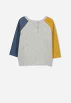 Cotton On - Roy raglan long sleeve - multi