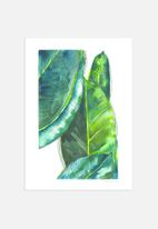 Claudia Liebenberg - Banana Leaves
