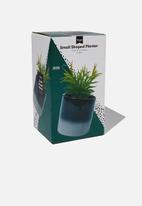 Typo - Shaped planter with plant - black & grey
