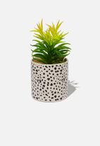 Typo - Shaped spot planter with plant - grey & black
