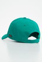 POLO - Parker classic peak - green