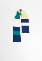 Superbalist - Multi stripe woven scarf - multi