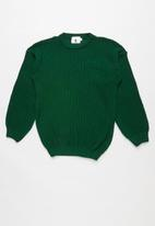 Rebel Republic - Teens knit - green