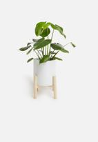 Present Time - Trestle ceramic plant pot - white