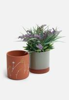 Urchin Art - Succulent planter set - terracotta