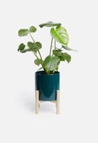 Present Time - Trestle ceramic plant pot - dark blue