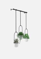 Umbra - Triflora hanging planters & rod - black