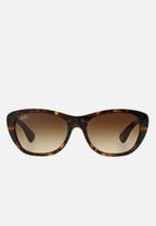 Ray-Ban - Ray-ban rb4227 55 sunglasses  - brown & black