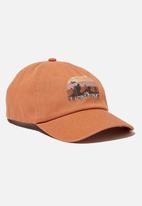 Cotton On - Licensed baseball cap - orange