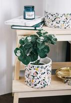 Typo - Small shaped planter - multi