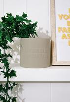 Typo - Small shaped planter - beige
