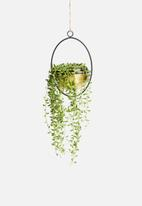 Sixth Floor - Georgia hanging planter - gold & black