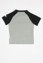 Nike - Short sleeve raglan tee - grey & black