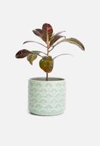 Sixth Floor - Embossed planter - teal