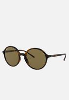Ray-Ban - Dark brown RB4304 710/73 53 - brown & black