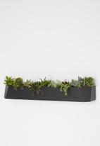 Emerging Creatives - Stockholm herb mount - black