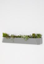 Emerging Creatives - Stockholm herb mount - clay grey