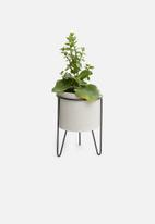 Sixth Floor - Cement plant pot - grey