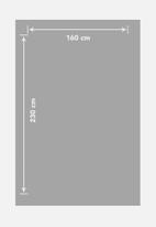 SF Collection - Dazai dip dye rug - grey