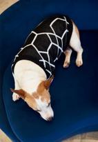 Lucky and Lou - Jordan dog jersey - black/white