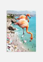 83 Oranges - Flamingos on the beach
