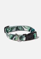 Typo - Pet collar - green & white