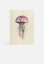 Carvel - Jellyfish