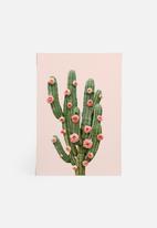 Paul Fuentes - Cactus and roses