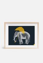 Amalia Restrepo - Elephant with umbrella