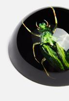H&S - Insect paper weight - green