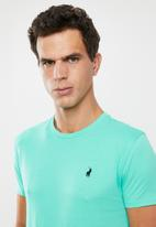 POLO - Lucas plain crew neck - green