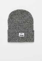 JEEP - Jeep knitted beanie - grey