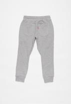 Levi's® - Slouchy knit jogger - grey