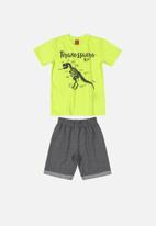 Bee Loop - Printed tee and shorts set - green & grey