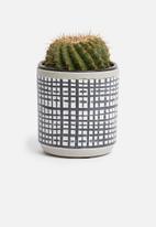 H&S - Mini tribal planter - charcoal