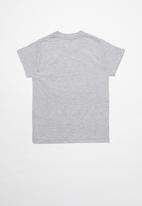 DC - Star short sleeve tee - grey
