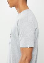 Quiksilver - Snake dream short sleeve T-shirt - grey