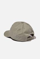 Cotton On - Licensed baseball cap - grey