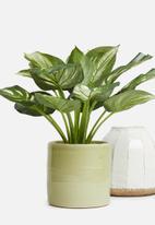 Silk By Design - Round ceramic flower pot - stone grey