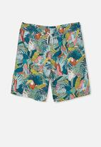Free by Cotton On - Boys volly short - multi