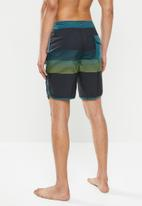 Quiksilver - Everyday grass roots 19 shorts - multi